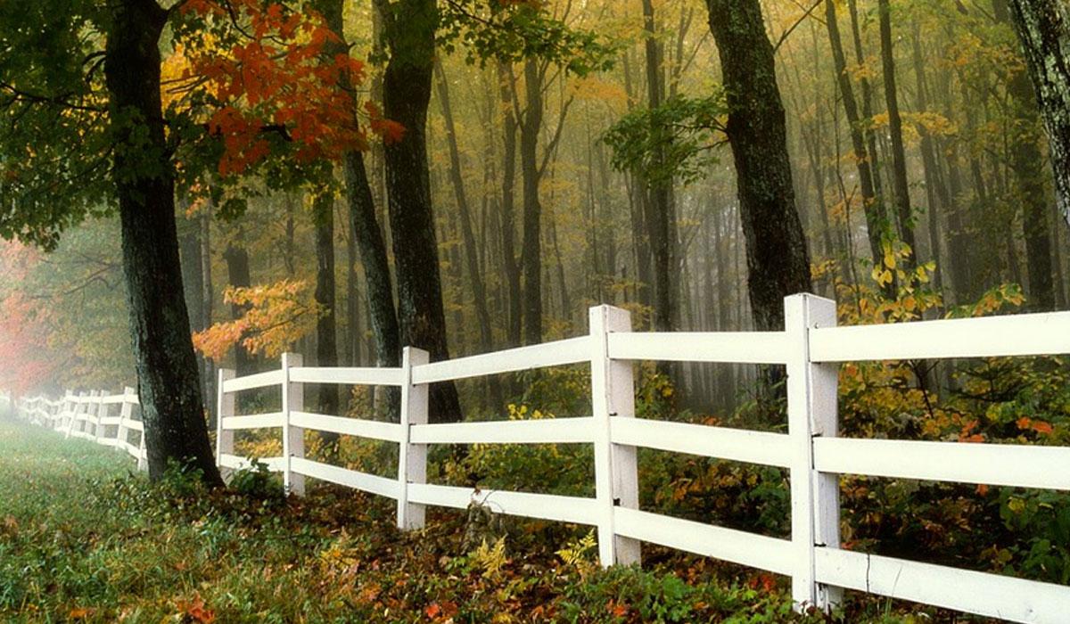 Building Fences = Defining Patents