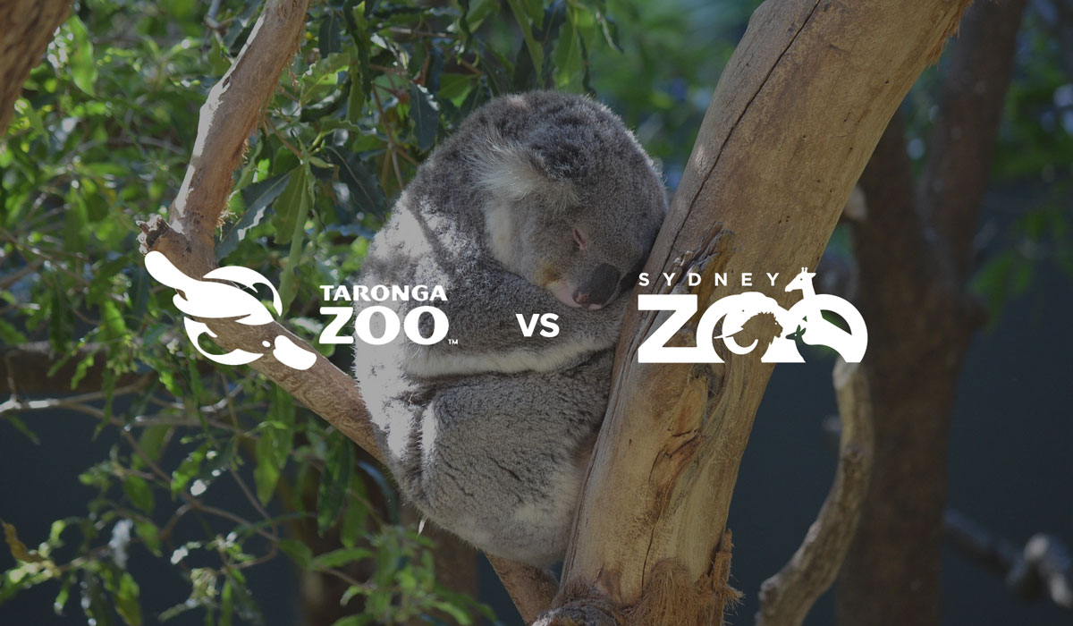 Taronga Conservation Society Australia vs Sydney Zoo Pty Ltd