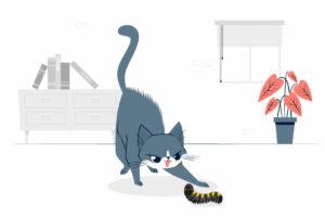 CAT vs PROCAT: Caterpillar succeeds in Federal Court action against Puma